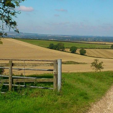 Landscape & Nature in the Pewsey Vale