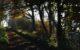 Pewsey Autumnal Mist 2